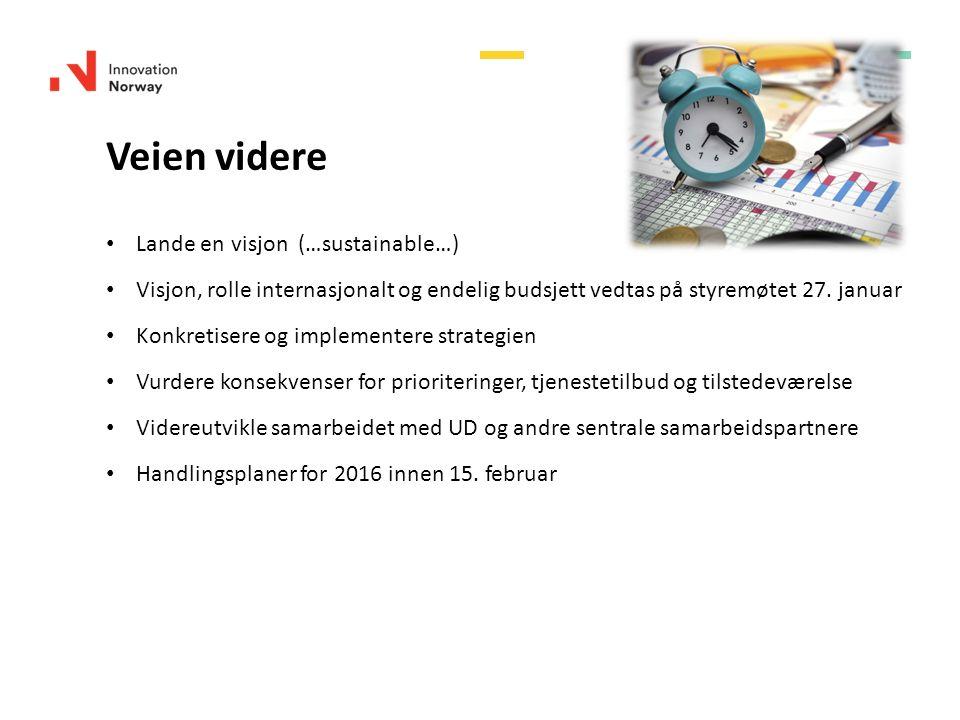 Veien videre Lande en visjon (…sustainable…) Visjon, rolle internasjonalt og endelig budsjett vedtas på styremøtet 27. januar Konkretisere og implemen