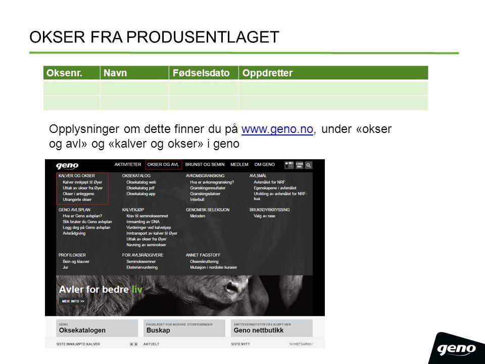 OKSER FRA PRODUSENTLAGET Oksenr.NavnFødselsdatoOppdretter Opplysninger om dette finner du på www.geno.no, under «okser og avl» og «kalver og okser» i genowww.geno.no