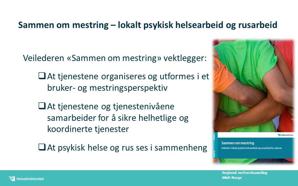 Bruker- og pasientforløp skisseres for Regional nettverkssamling Midt-Norge Milde kortvarige problemer Kortvarige alvorlige og langvarige mildere problemer/lidelser Alvorlige langvarige problemer/lidelser Skiller seg fra hverandre ut fra : problemets art, alvorlighet og varighet Beskrives med relevante mål og tiltak, ansvarsplassering og samarbeidsrelasjoner