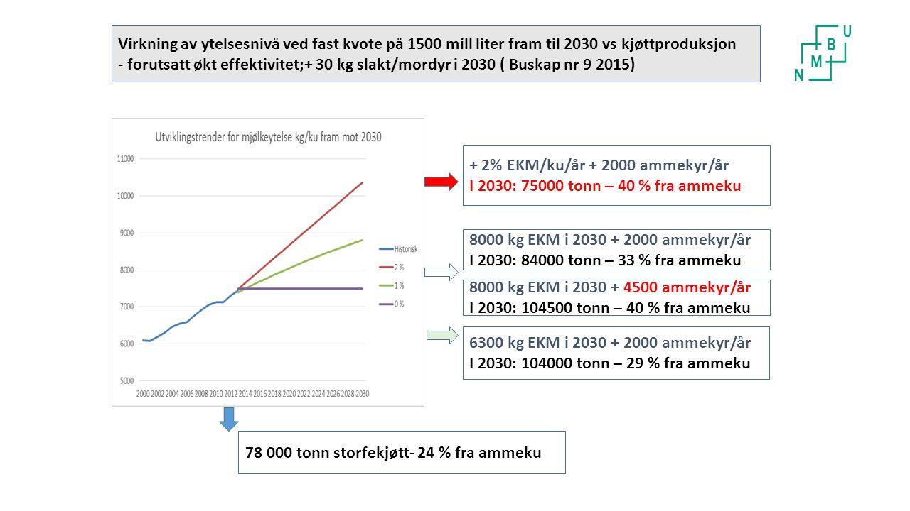 Virkning av ytelsesnivå ved fast kvote på 1500 mill liter fram til 2030 vs kjøttproduksjon - forutsatt økt effektivitet;+ 30 kg slakt/mordyr i 2030 ( Buskap nr 9 2015) + 2% EKM/ku/år + 2000 ammekyr/år I 2030: 75000 tonn – 40 % fra ammeku 78 000 tonn storfekjøtt- 24 % fra ammeku 8000 kg EKM i 2030 + 2000 ammekyr/år I 2030: 84000 tonn – 33 % fra ammeku 8000 kg EKM i 2030 + 4500 ammekyr/år I 2030: 104500 tonn – 40 % fra ammeku 6300 kg EKM i 2030 + 2000 ammekyr/år I 2030: 104000 tonn – 29 % fra ammeku