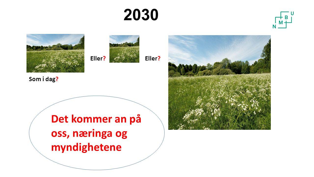 2030 Som i dag Eller Det kommer an på oss, næringa og myndighetene