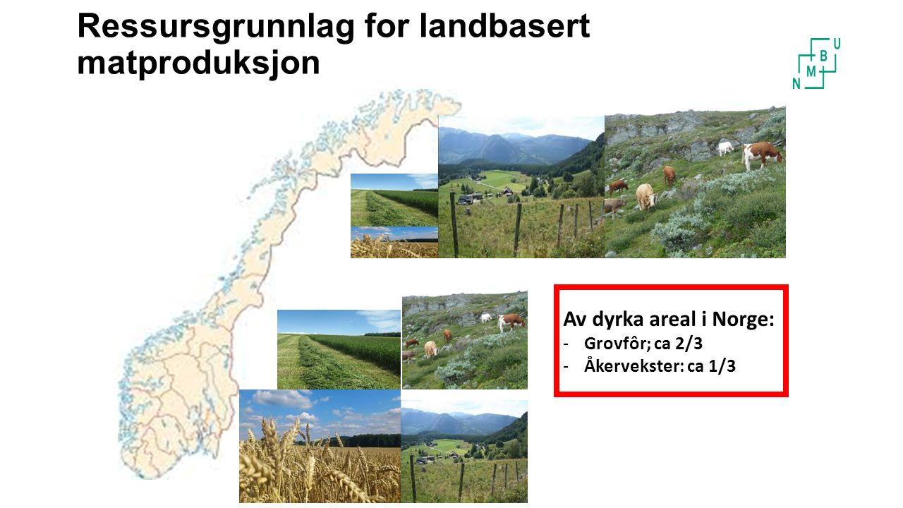 Ressursgrunnlag for landbasert matproduksjon Av dyrka areal i Norge: -Grovfôr; ca 2/3 -Åkervekster: ca 1/3