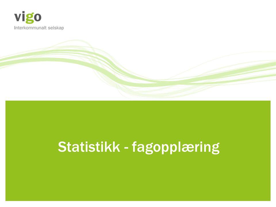 Statistikk - fagopplæring