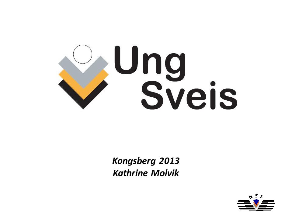 Hva er Ung Sveis, hvordan oppsto forumet.Hva har skjedd.