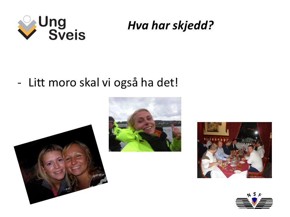 -Web side ble etablert Mai 2008, www.ungsveis.org www.ungsveis.org -Ledergruppe satt sammen av 7 stykker fra hele Norge -Sammenslått med NSF