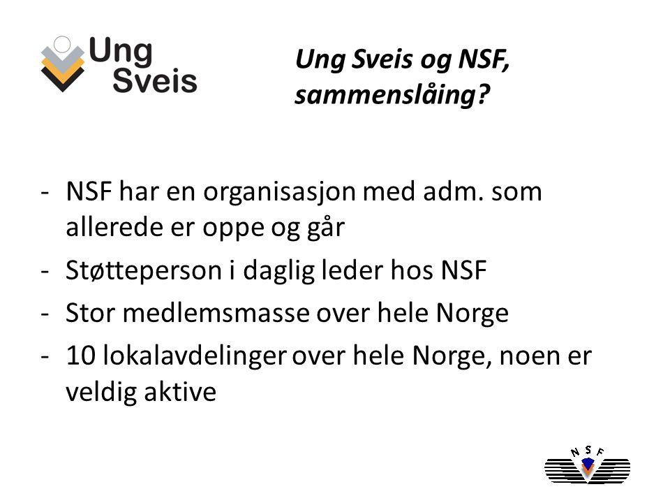 -NSF har i sin organisasjon definert er faglig forum som aldri har vært i drift -Har et sterkt behov for å få et slikt forum i gang -Fornyelse og nytenkning var strekt ønsket