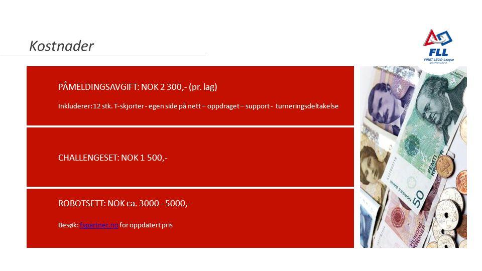Newton-nettverket 23.10.2014 Kostnader PÅMELDINGSAVGIFT: NOK 2 300,- (pr.