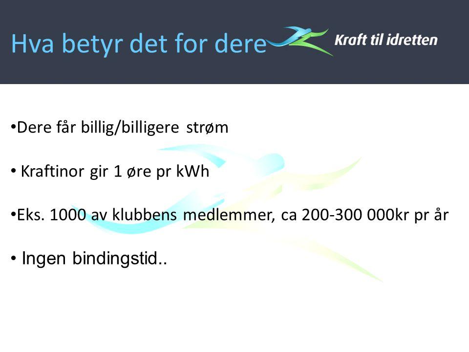Hva betyr det for dere Dere får billig/billigere strøm Kraftinor gir 1 øre pr kWh Eks.