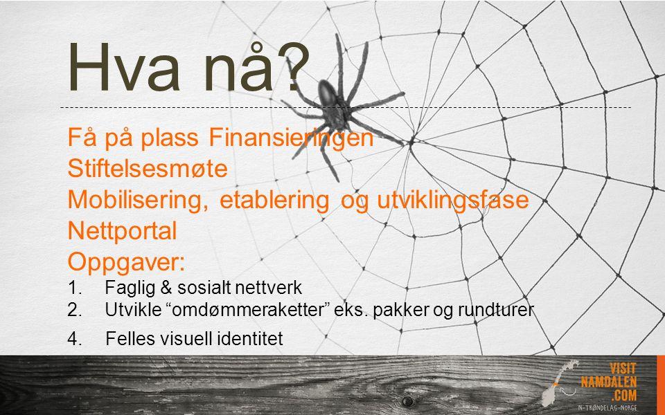 Hva nå? Få på plass Finansieringen Stiftelsesmøte Mobilisering, etablering og utviklingsfase Nettportal Oppgaver: 1.Faglig & sosialt nettverk 2.Utvikl