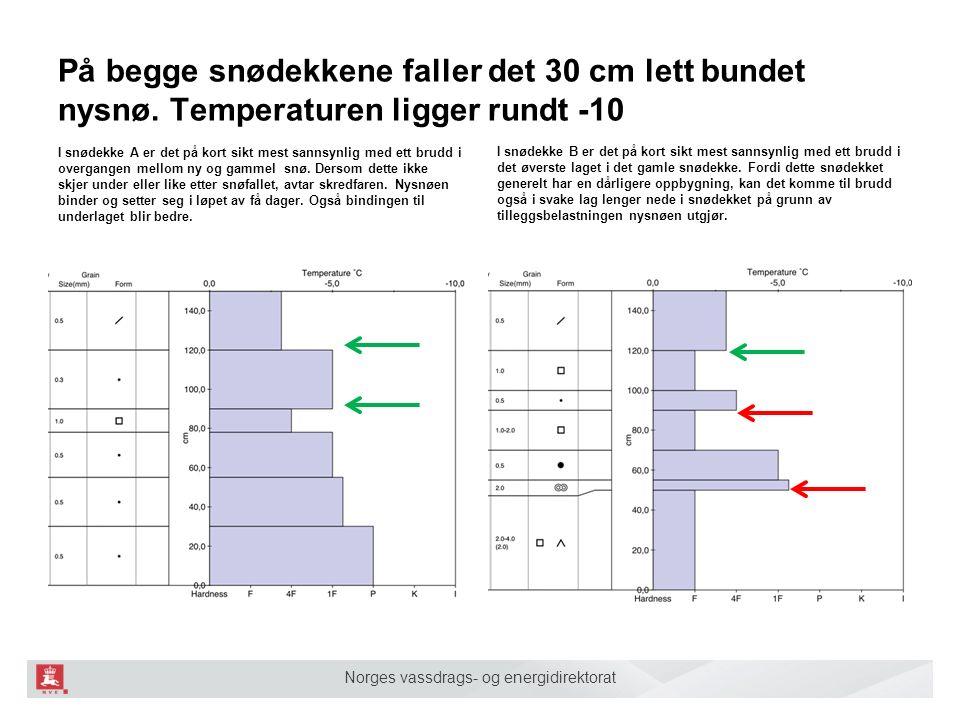 Norges vassdrags- og energidirektorat På begge snødekkene faller det 30 cm lett bundet nysnø. Temperaturen ligger rundt -10 I snødekke A er det på kor
