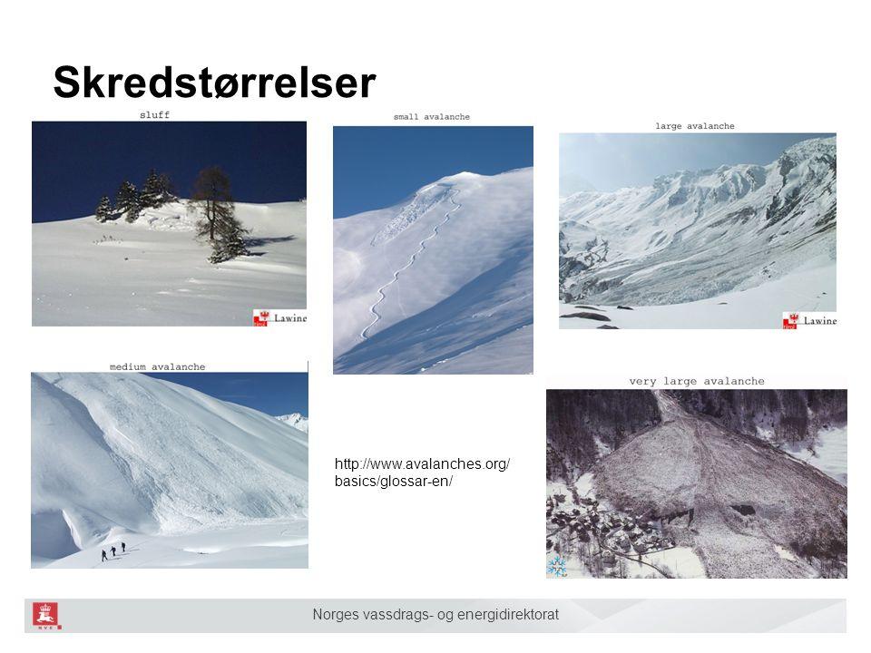 Norges vassdrags- og energidirektorat Skredstørrelser http://www.avalanches.org/ basics/glossar-en/