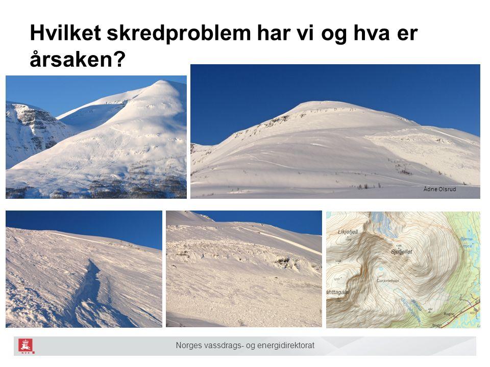 Norges vassdrags- og energidirektorat Hvilket skredproblem har vi og hva er årsaken? Ådne Olsrud