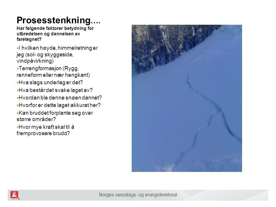 Norges vassdrags- og energidirektorat Prosesstenkning …. Har følgende faktorer betydning for utbredelsen og dannelsen av faretegnet?  I hvilken høyde