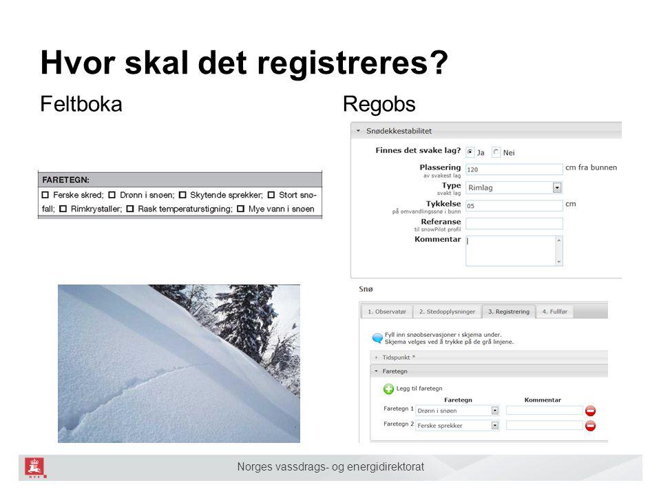 Norges vassdrags- og energidirektorat Hvor skal det registreres? RegobsFeltboka SLF