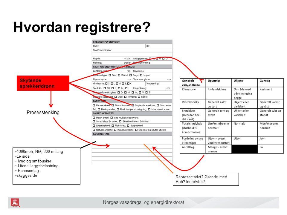 Norges vassdrags- og energidirektorat Hvordan registrere? Skytende sprekker/drønn Representativt? Økende med Hoh? Indre/ytre? 1300moh, NØ, 300 m lang