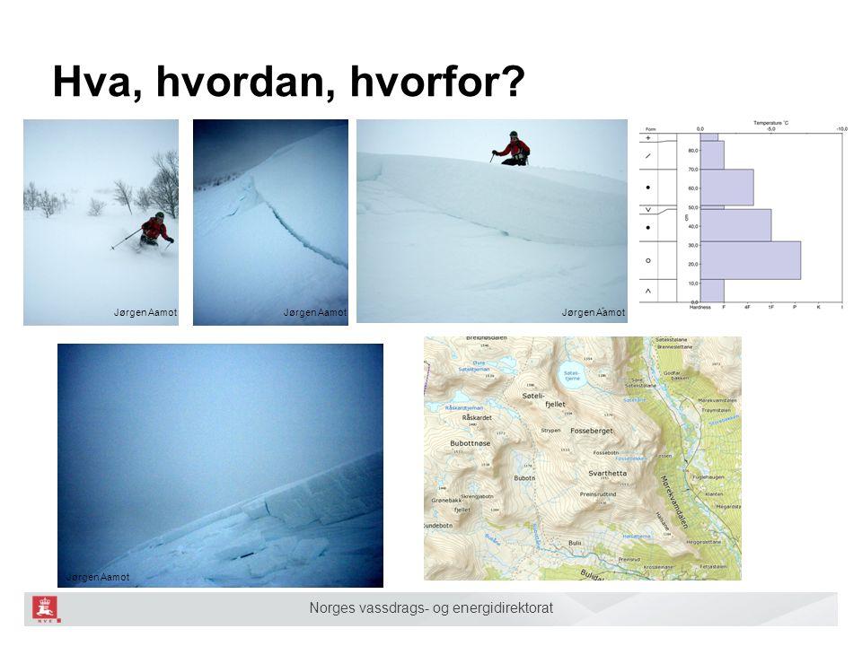 Norges vassdrags- og energidirektorat Hva, hvordan, hvorfor Jørgen Aamot