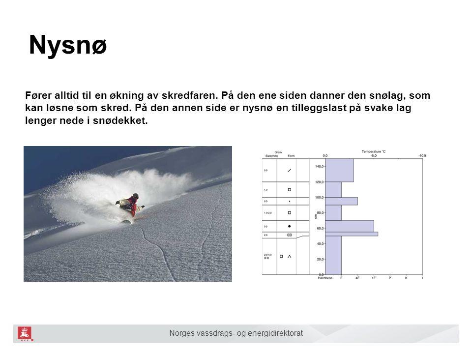 Norges vassdrags- og energidirektorat Nysnø Fører alltid til en økning av skredfaren. På den ene siden danner den snølag, som kan løsne som skred. På