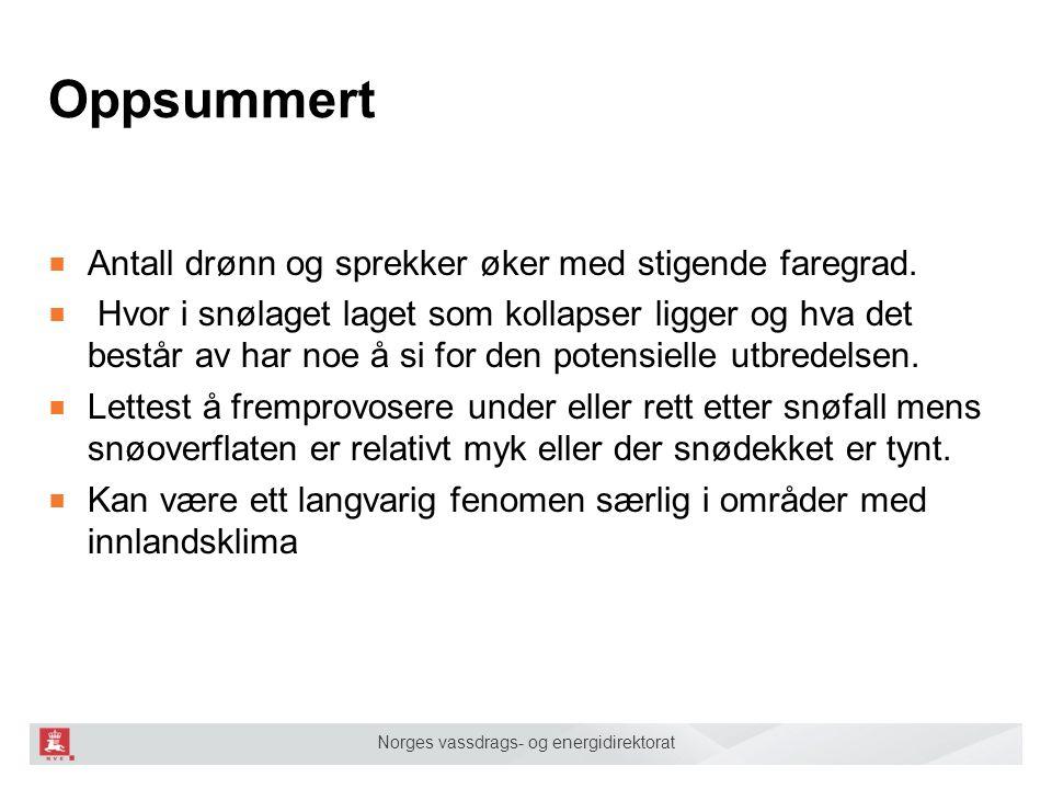 Norges vassdrags- og energidirektorat Oppsummert ■ Antall drønn og sprekker øker med stigende faregrad. ■ Hvor i snølaget laget som kollapser ligger o
