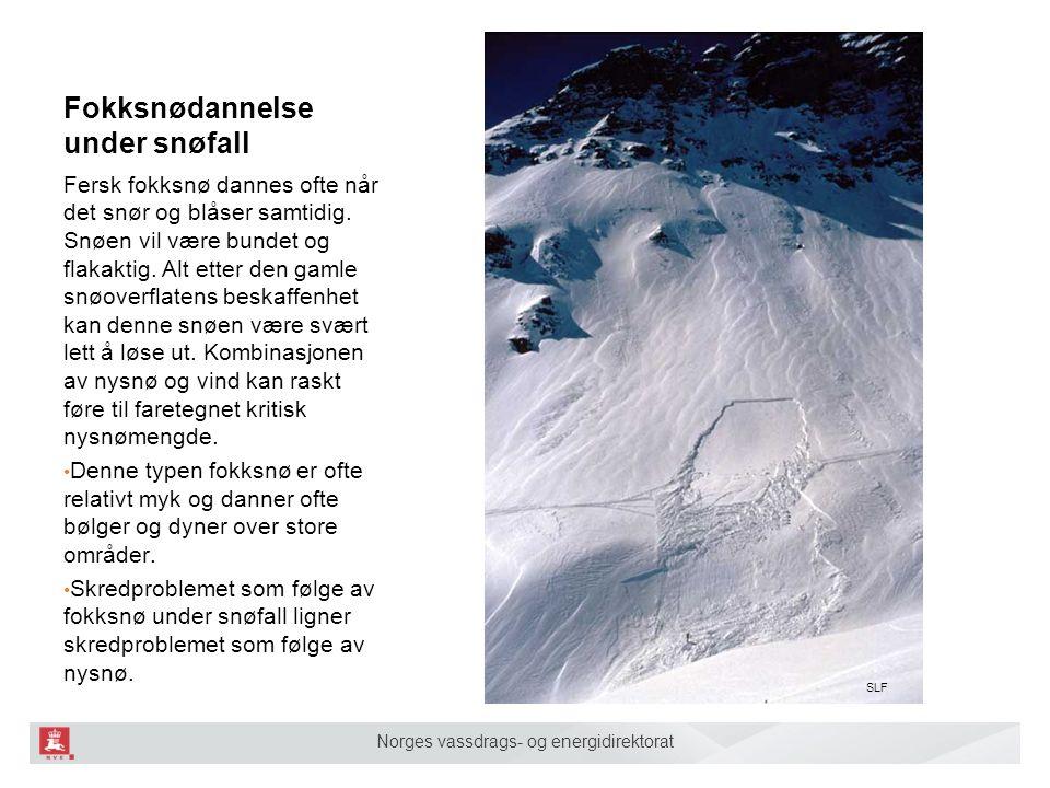 Norges vassdrags- og energidirektorat Fokksnødannelse under snøfall Fersk fokksnø dannes ofte når det snør og blåser samtidig. Snøen vil være bundet o