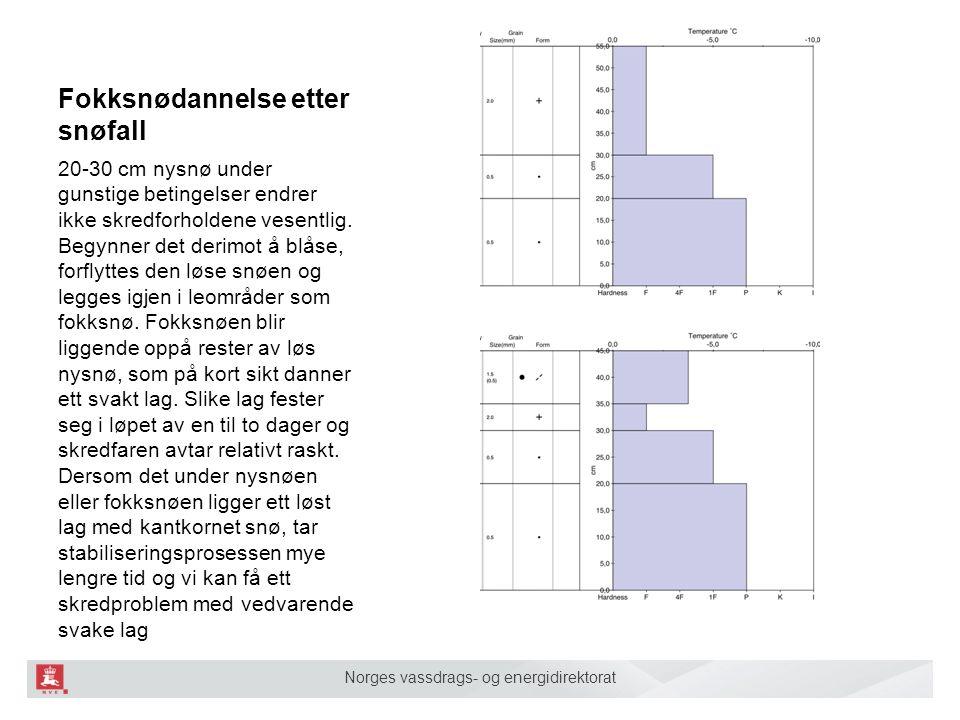 Norges vassdrags- og energidirektorat Fokksnødannelse etter snøfall 20-30 cm nysnø under gunstige betingelser endrer ikke skredforholdene vesentlig. B