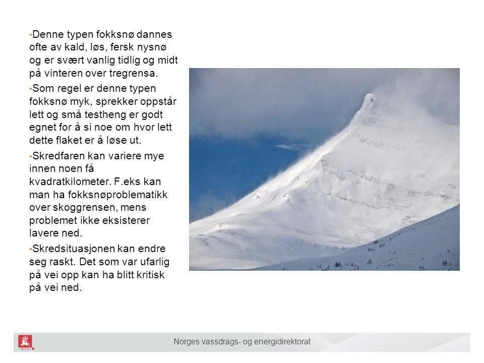 Norges vassdrags- og energidirektorat Denne typen fokksnø dannes ofte av kald, løs, fersk nysnø og er svært vanlig tidlig og midt på vinteren over tre