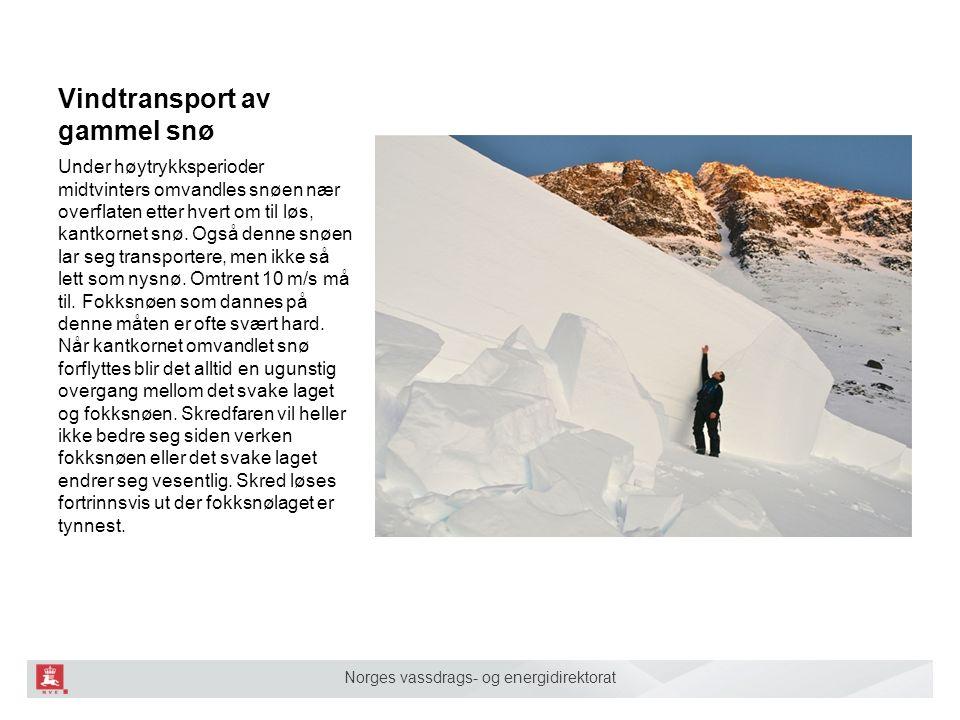Norges vassdrags- og energidirektorat Vindtransport av gammel snø Under høytrykksperioder midtvinters omvandles snøen nær overflaten etter hvert om til løs, kantkornet snø.