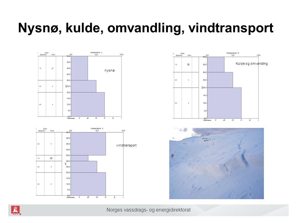 Norges vassdrags- og energidirektorat Nysnø, kulde, omvandling, vindtransport nysnø Kulde og omvandling vindtransport