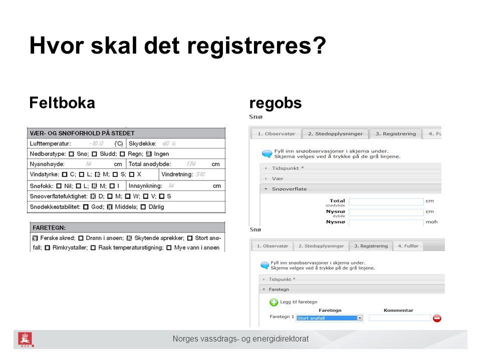 Norges vassdrags- og energidirektorat Hvor skal det registreres Feltbokaregobs