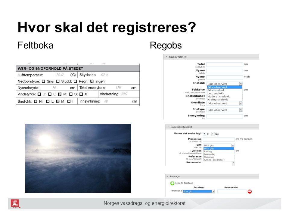 Norges vassdrags- og energidirektorat Hvor skal det registreres RegobsFeltboka SLF