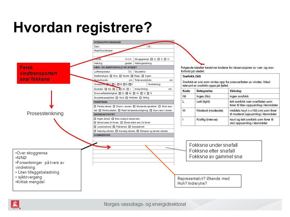 Norges vassdrags- og energidirektorat Hvordan registrere? Fersk vindtransportert snø/ fokksnø Representativt? Økende med Hoh? Indre/ytre? Over skoggre