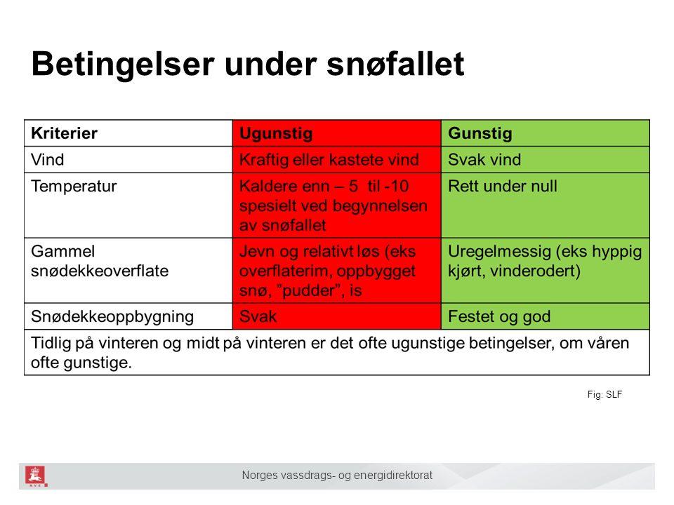 Norges vassdrags- og energidirektorat Betingelser under snøfallet Fig: SLF