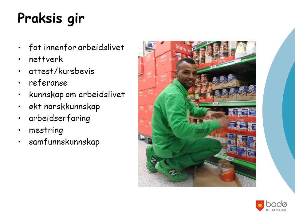 Praksis gir fot innenfor arbeidslivet nettverk attest/kursbevis referanse kunnskap om arbeidslivet økt norskkunnskap arbeidserfaring mestring samfunnskunnskap