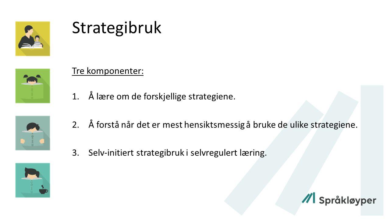 Strategibruk Tre komponenter: 1.Å lære om de forskjellige strategiene. 2.Å forstå når det er mest hensiktsmessig å bruke de ulike strategiene. 3.Selv-