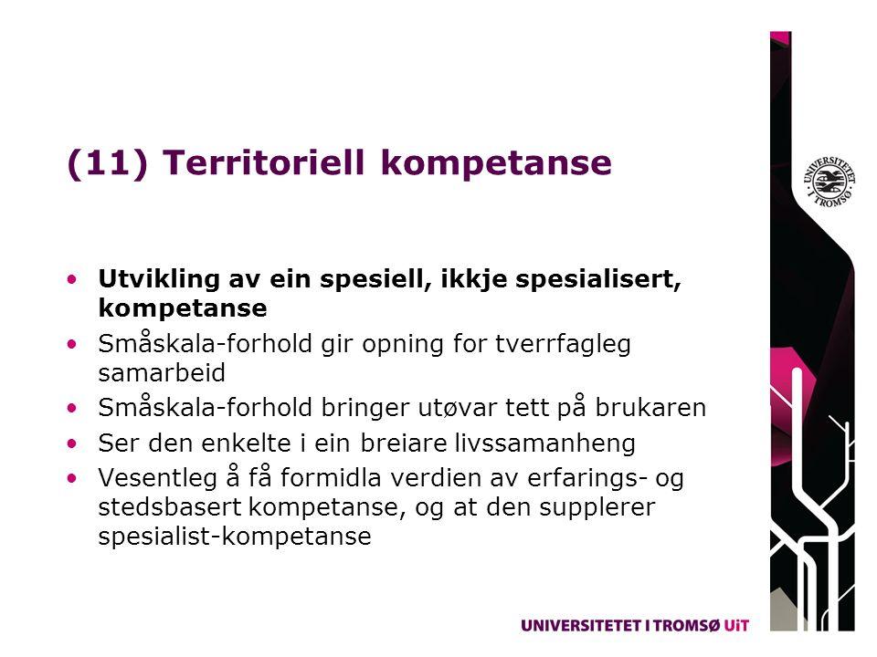 (11) Territoriell kompetanse Utvikling av ein spesiell, ikkje spesialisert, kompetanse Småskala-forhold gir opning for tverrfagleg samarbeid Småskala-