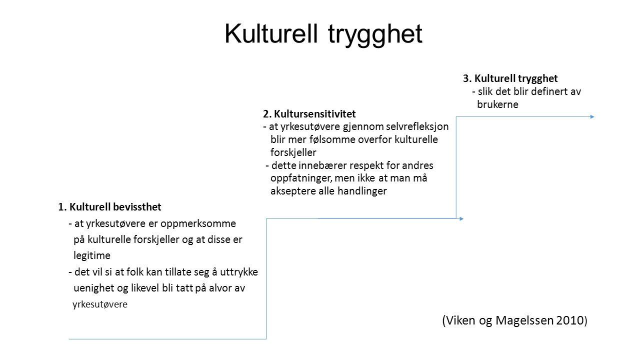 Kulturell trygghet 3. Kulturell trygghet - slik det blir definert av brukerne 2.