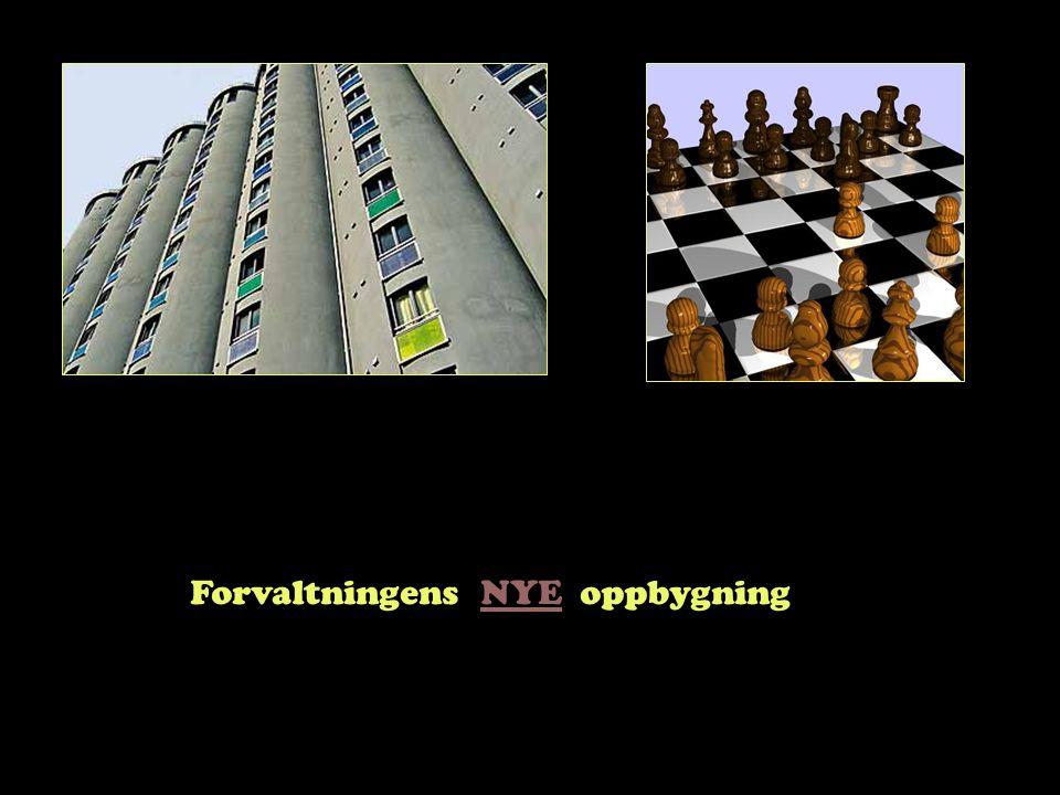 Steinar Taubøll - JUS201 UMB Fylket? Hva er sammenhengen mellom fylkeskommunen og fylkesmannen?