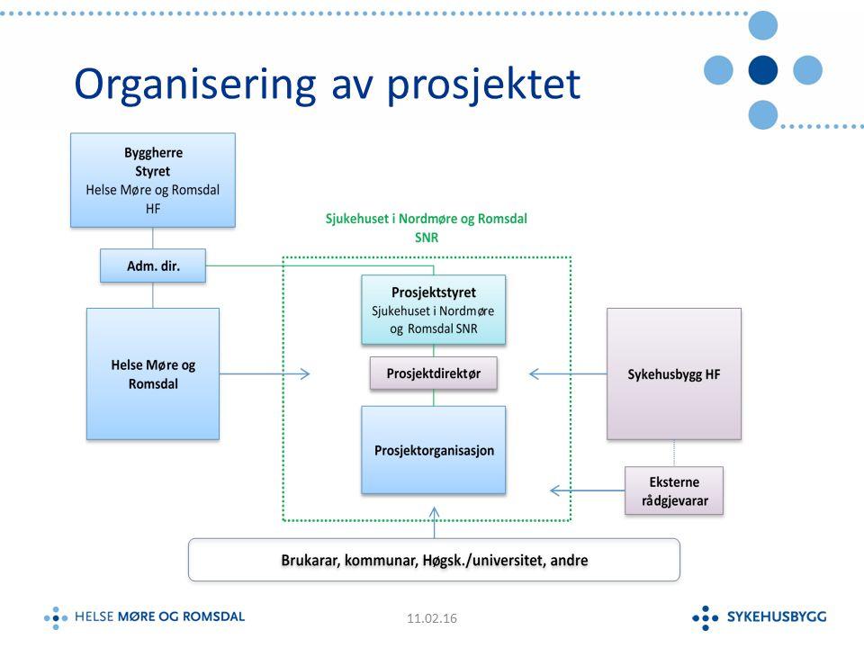 Organisering av prosjektet 11.02.16