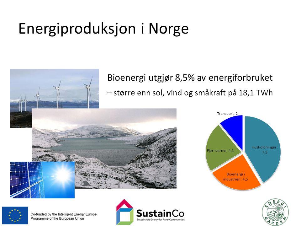 Energiproduksjon i Norge Bioenergi utgjør 8,5% av energiforbruket – større enn sol, vind og småkraft på 18,1 TWh