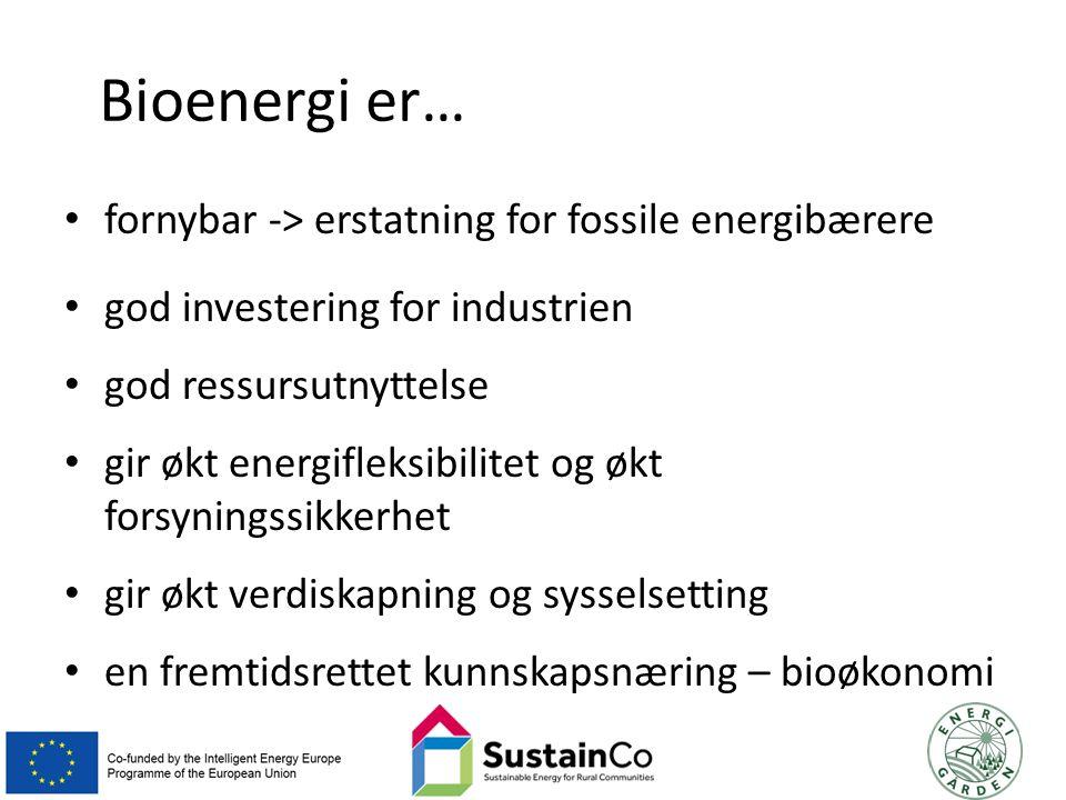 Bioenergi er… fornybar -> erstatning for fossile energibærere god investering for industrien god ressursutnyttelse gir økt energifleksibilitet og økt forsyningssikkerhet gir økt verdiskapning og sysselsetting en fremtidsrettet kunnskapsnæring – bioøkonomi