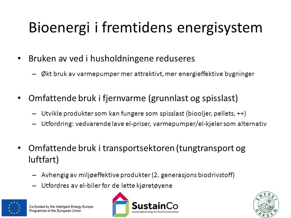 Bioenergi i fremtidens energisystem Bruken av ved i husholdningene reduseres – Økt bruk av varmepumper mer attraktivt, mer energieffektive bygninger Omfattende bruk i fjernvarme (grunnlast og spisslast) – Utvikle produkter som kan fungere som spisslast (biooljer, pellets, ++) – Utfordring: vedvarende lave el-priser, varmepumper/el-kjeler som alternativ Omfattende bruk i transportsektoren (tungtransport og luftfart) – Avhengig av miljøeffektive produkter (2.