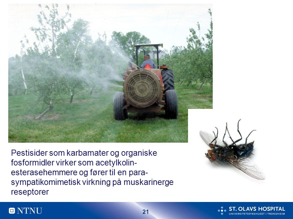 21 Pestisider som karbamater og organiske fosformidler virker som acetylkolin- esterasehemmere og fører til en para- sympatikomimetisk virkning på muskarinerge reseptorer