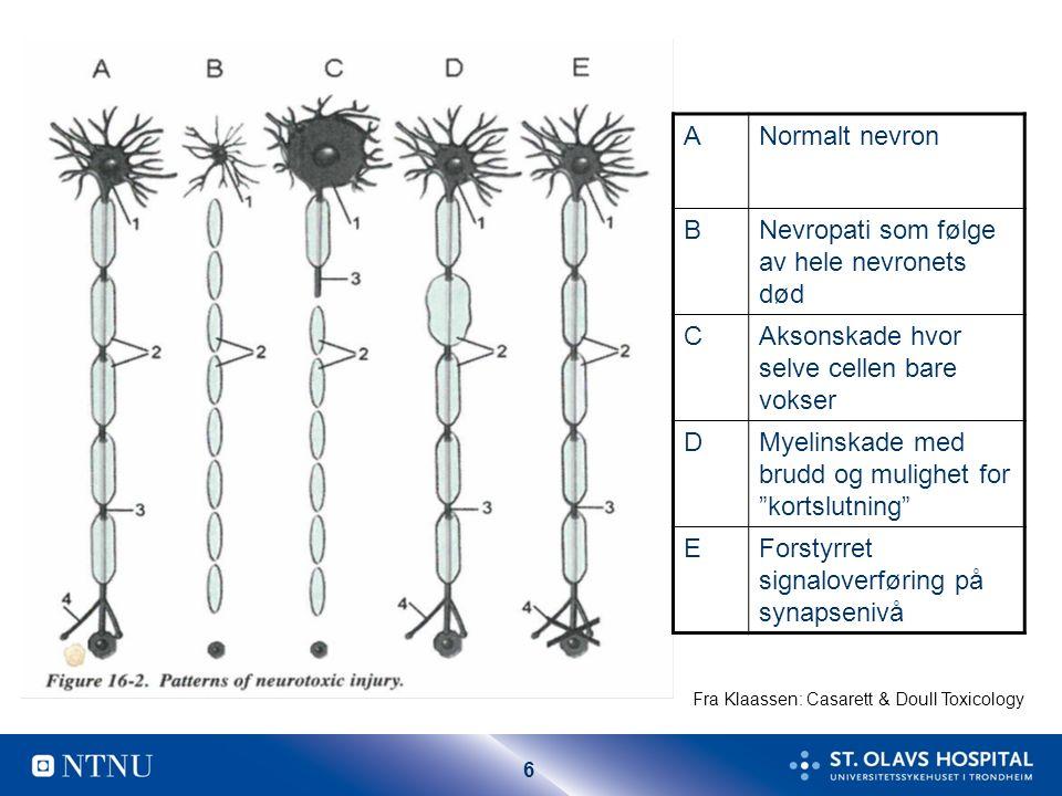 6 ANormalt nevron BNevropati som følge av hele nevronets død CAksonskade hvor selve cellen bare vokser DMyelinskade med brudd og mulighet for kortslutning EForstyrret signaloverføring på synapsenivå Fra Klaassen: Casarett & Doull Toxicology