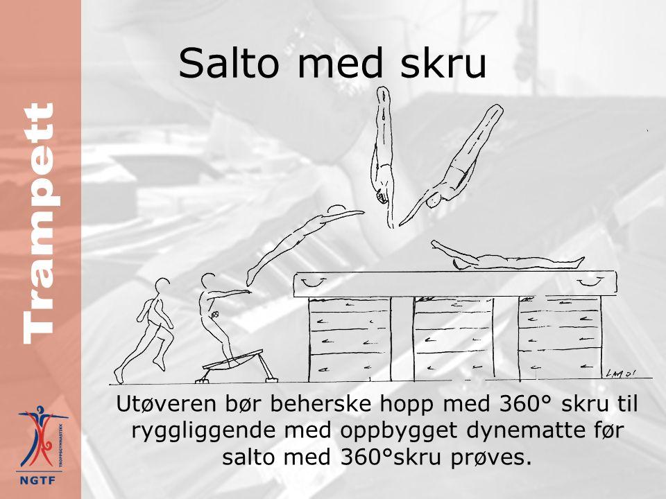 Salto med skru Hjelpeøvelser: forlengs rulle og snu 180° til mage forlengs rulle og snu 180° til mage strakt hopp med ¾ rotasjon til ryggliggende og rull til siden etter landing strakt hopp med ¾ rotasjon til ryggliggende og rull til siden etter landing strak salto til ryggliggende på oppbygd dynematte strak salto til ryggliggende på oppbygd dynematte strak salto med 360° skru til ryggliggende på oppbygd dynematte strak salto med 360° skru til ryggliggende på oppbygd dynematte