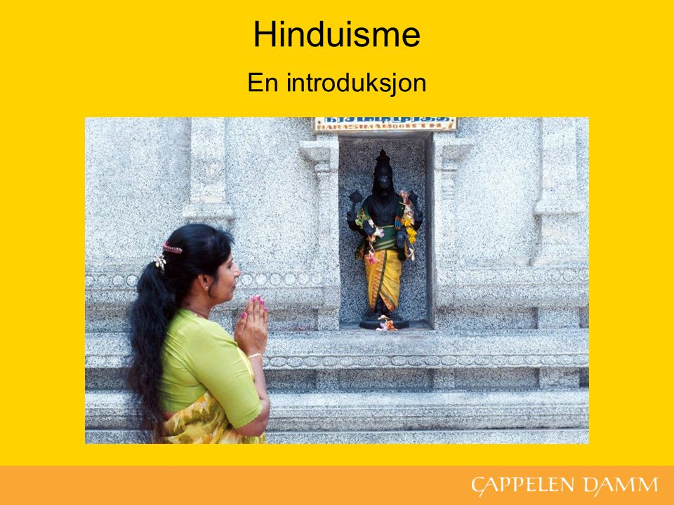 Hinduisme En introduksjon