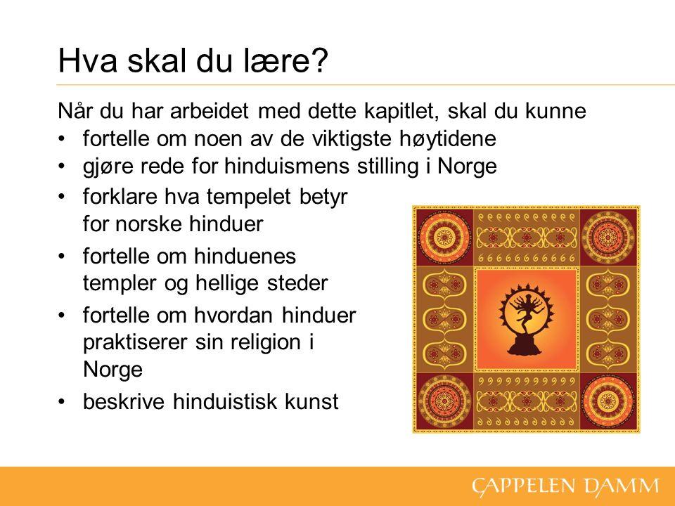 Hvem er hindu.