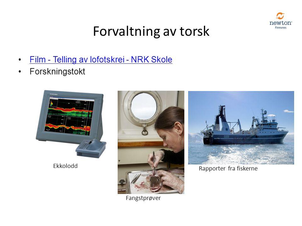 Forvaltning av torsk Film - Telling av lofotskrei - NRK Skole Forskningstokt Ekkolodd Fangstprøver Rapporter fra fiskerne