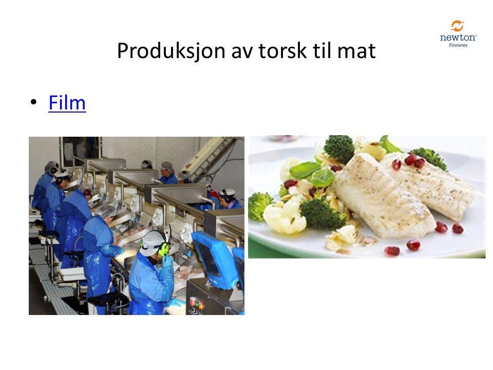Produksjon av torsk til mat Film