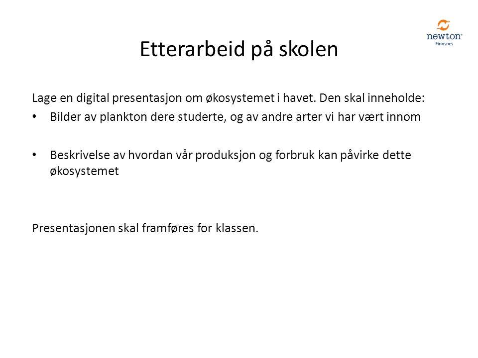 Etterarbeid på skolen Lage en digital presentasjon om økosystemet i havet.