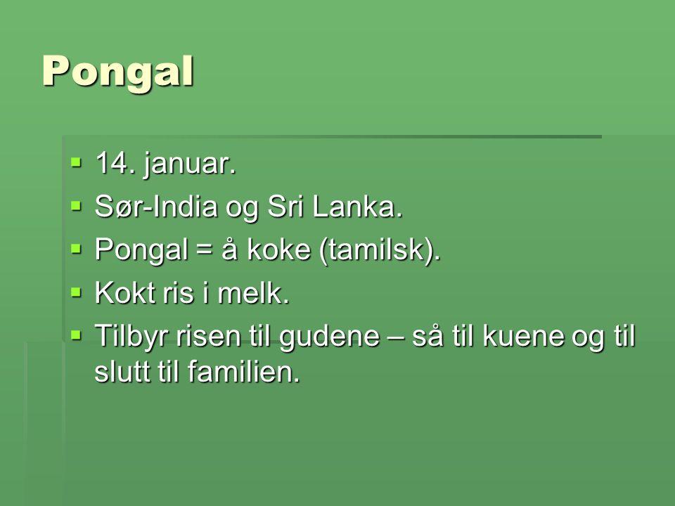 Pongal  14. januar.  Sør-India og Sri Lanka.  Pongal = å koke (tamilsk).