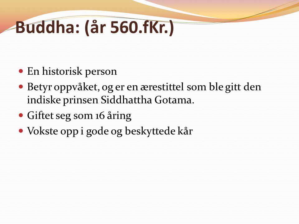 Buddha: (år 560.fKr.) En historisk person Betyr oppvåket, og er en ærestittel som ble gitt den indiske prinsen Siddhattha Gotama.